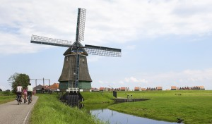 dutch-must-see-tipical-landscape-to-do