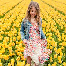 tulip-fields-holland-destination-management-holland-the-netherlands